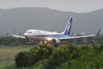kuro2059さんが、仙台空港で撮影した全日空 737-881の航空フォト(写真)