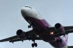 kuro2059さんが、仙台空港で撮影したピーチ A320-214の航空フォト(飛行機 写真・画像)