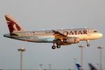 ばっきーさんが、羽田空港で撮影したカタールアミリフライト A319-133X CJの航空フォト(写真)