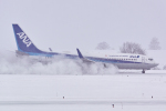 delawakaさんが、旭川空港で撮影した全日空 737-881の航空フォト(写真)