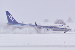 delawakaさんが、旭川空港で撮影した全日空 737-881の航空フォト(飛行機 写真・画像)