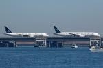 じゃじゃ丸さんが、羽田空港で撮影した全日空 787-9の航空フォト(写真)