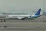 pringlesさんが、香港国際空港で撮影したガルーダ・インドネシア航空 737-8-MAXの航空フォト(写真)