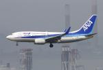 Asamaさんが、香港国際空港で撮影した全日空 737-781の航空フォト(写真)