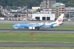 kuro2059さんが、福岡空港で撮影した日本トランスオーシャン航空 737-8Q3の航空フォト(写真)