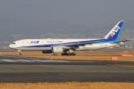 sumihan_2010さんが、伊丹空港で撮影した全日空 777-281の航空フォト(写真)
