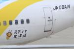 キイロイトリさんが、神戸空港で撮影したAIR DO 737-781の航空フォト(写真)