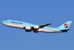 あしゅーさんが、成田国際空港で撮影した大韓航空 747-8B5の航空フォト(写真)