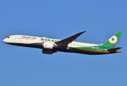 あしゅーさんが、成田国際空港で撮影したエバー航空 787-9の航空フォト(写真)