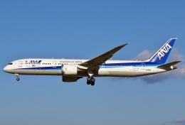 あしゅーさんが、成田国際空港で撮影した全日空 787-9の航空フォト(写真)