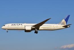 あしゅーさんが、成田国際空港で撮影したユナイテッド航空 787-9の航空フォト(写真)