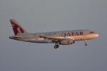SKY☆101さんが、羽田空港で撮影したカタールアミリフライト A319-133X CJの航空フォト(写真)