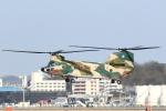 虎太郎19さんが、福岡空港で撮影した航空自衛隊 CH-47J/LRの航空フォト(写真)