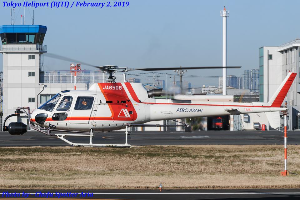Chofu Spotter Ariaさんの朝日航洋 Eurocopter AS350 Ecureuil/AStar (JA6508) 航空フォト