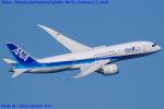 Chofu Spotter Ariaさんが、羽田空港で撮影した全日空 787-8 Dreamlinerの航空フォト(写真)
