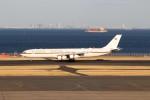 ハム太郎。さんが、羽田空港で撮影したドイツ空軍 A340-313Xの航空フォト(写真)