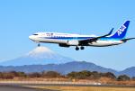 mojioさんが、静岡空港で撮影した全日空 737-881の航空フォト(写真)