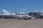 BENKIMAN-ENLさんが、羽田空港で撮影したフランス空軍 A319-115CJの航空フォト(写真)