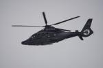 神宮寺ももさんが、香港国際空港で撮影した香港政府フライングサービス EC155B1の航空フォト(写真)