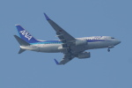 pringlesさんが、長崎空港で撮影した全日空 737-781の航空フォト(写真)