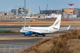 Vityaさんが、羽田空港で撮影したバハマスエア 737-700の航空フォト(写真)