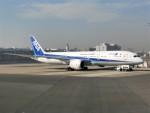 kumagorouさんが、羽田空港で撮影した全日空 787-9の航空フォト(写真)