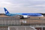 さくらの城南山。さんが、成田国際空港で撮影したエア・タヒチ・ヌイ 787-9の航空フォト(写真)