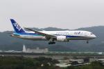 HLeeさんが、台北松山空港で撮影した全日空 787-8 Dreamlinerの航空フォト(写真)