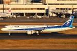 セブンさんが、羽田空港で撮影した全日空 A321-211の航空フォト(写真)