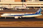 セブンさんが、羽田空港で撮影した全日空 A321-272Nの航空フォト(写真)