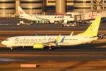 セブンさんが、羽田空港で撮影したソラシド エア 737-86Nの航空フォト(写真)