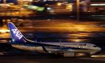 STAR TEAMさんが、中部国際空港で撮影した全日空 737-781の航空フォト(写真)