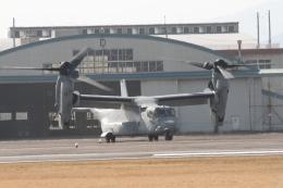 ひらひささんが、明野駐屯地で撮影したアメリカ海兵隊 MV-22Bの航空フォト(飛行機 写真・画像)