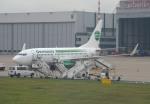 IL-18さんが、デュッセルドルフ国際空港で撮影したゲルマニア 737-75Bの航空フォト(写真)