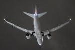 キイロイトリさんが、伊丹空港で撮影した日本航空 787-8 Dreamlinerの航空フォト(写真)