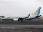 FT51ANさんが、羽田空港で撮影した大韓航空 737-7B5 BBJの航空フォト(写真)