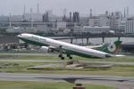 delawakaさんが、羽田空港で撮影したエバー航空 A330-302の航空フォト(写真)