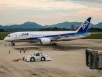 TulipTristar 777さんが、広島空港で撮影したボーイング 787-8 Dreamlinerの航空フォト(写真)