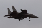 木人さんが、茨城空港で撮影した航空自衛隊 F-15J Eagleの航空フォト(写真)