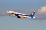 VFRさんが、羽田空港で撮影した全日空 A320-211の航空フォト(写真)