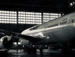 NOCKsさんが、羽田空港で撮影した日本航空 787-8 Dreamlinerの航空フォト(飛行機 写真・画像)