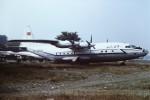 tassさんが、北京首都国際空港で撮影したCAAC  中國民航 An-12BPの航空フォト(写真)