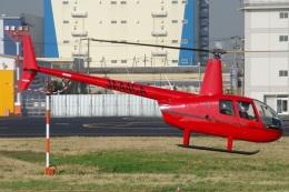 MOR1(新アカウント)さんが、東京ヘリポートで撮影した日本法人所有 R44 IIの航空フォト(飛行機 写真・画像)