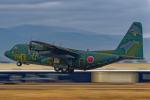 いっち〜@RJFMさんが、新田原基地で撮影した航空自衛隊 C-130H Herculesの航空フォト(写真)