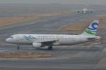 Cherry blossoms さんが、関西国際空港で撮影したスカイ・アンコール・エアラインズ A320-212の航空フォト(飛行機 写真・画像)