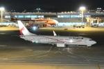 Cherry blossoms NRTさんが、成田国際空港で撮影したニューギニア航空 737-8BKの航空フォト(写真)