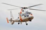 ヘリオスさんが、東京ヘリポートで撮影した東邦航空 SA365N1 Dauphin 2の航空フォト(写真)