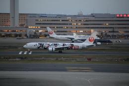 ja007gさんが、羽田空港で撮影した日本航空 767-346/ERの航空フォト(飛行機 写真・画像)