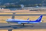 Ken_heartさんが、福島空港で撮影した全日空 737-8ALの航空フォト(写真)