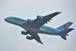 こじゆきさんが、香港国際空港で撮影した大韓航空 A380-861の航空フォト(写真)